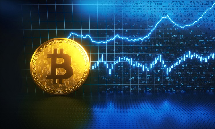 How Much Can You Earn Trading Cryptocurrency? – Tips For Beginners